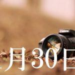 11月30日生まれの当たる365日誕生日占い(同性あり)