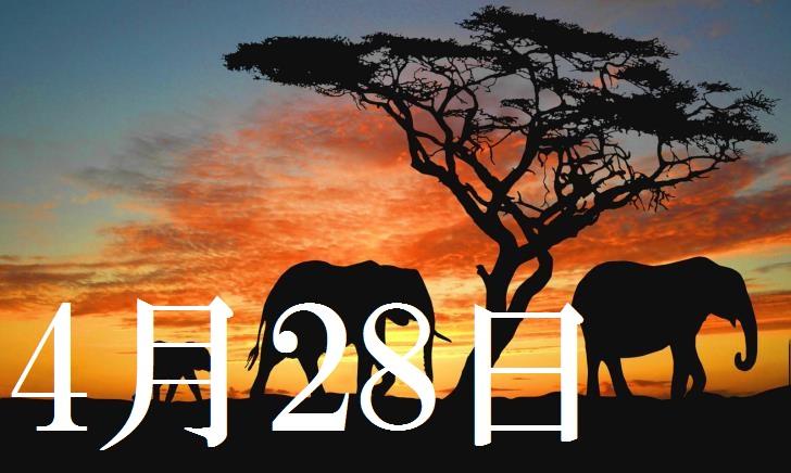 4月28日生まれの当たる365日誕生日占い(同性あり)