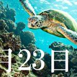 5月23日生まれの当たる365日誕生日占い(同性あり)