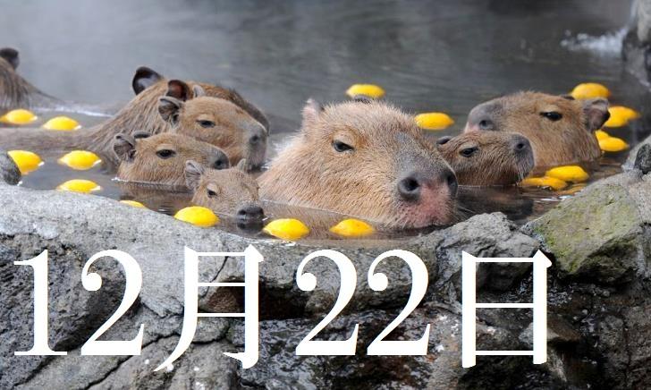 12月22日生まれの当たる365日誕生日占い(同性あり)