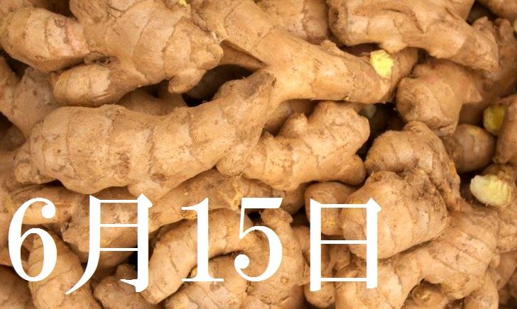 6月15日生まれの当たる365日誕生日占い(同性あり)