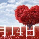 2月14日生まれの当たる365日誕生日占い(同性あり)