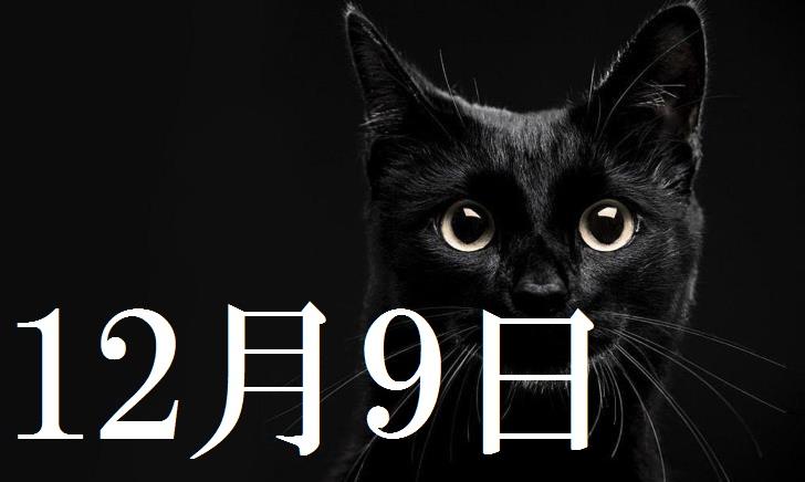12月9日生まれの当たる365日誕生日占い(同性あり)