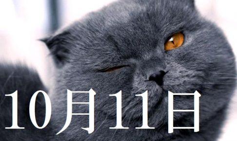 10月11日生まれの当たる365日誕生日占い(同性あり)