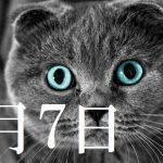 6月7日生まれの当たる365日誕生日占い(同性あり)