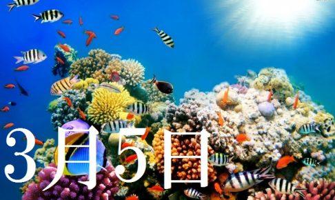 3月5日生まれの当たる365日誕生日占い(同性あり)